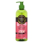 Botaneco Garden Coandr Damage Repair Shampoo 500mL