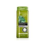 Yves Rocher Anti-Hair Loss Shampoo, 300ml