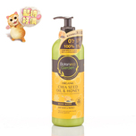 Botaneco Garden Chia Seed And Honey Moist And Protect Body Wash 500mL