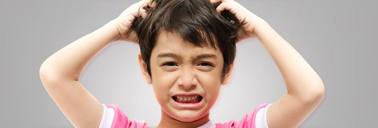 article-head lice-children-738x250.jpg