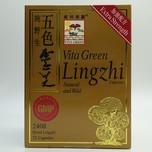 Vita Green Lingzhi 72pcs