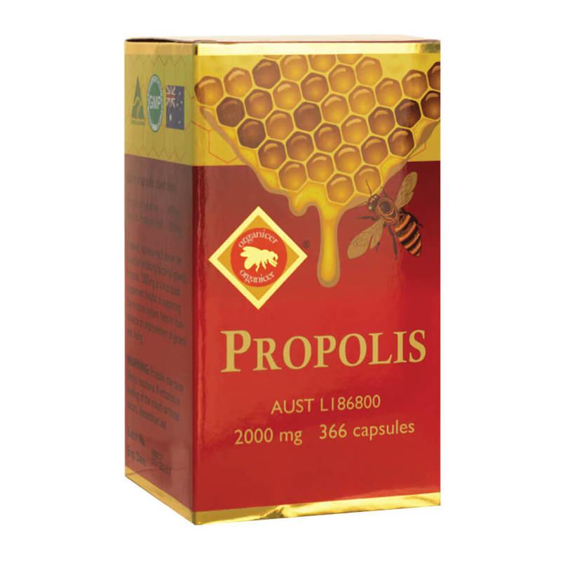 Ocean King Propolis 2000mg, 366 capsules