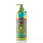 Botaneco Garden Trio Oil Anti-Dandruff Shampoo 500mL