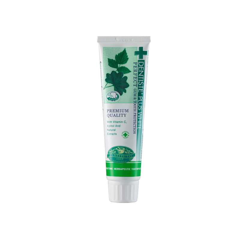 DENTISTE night time toothpaste tube 100g